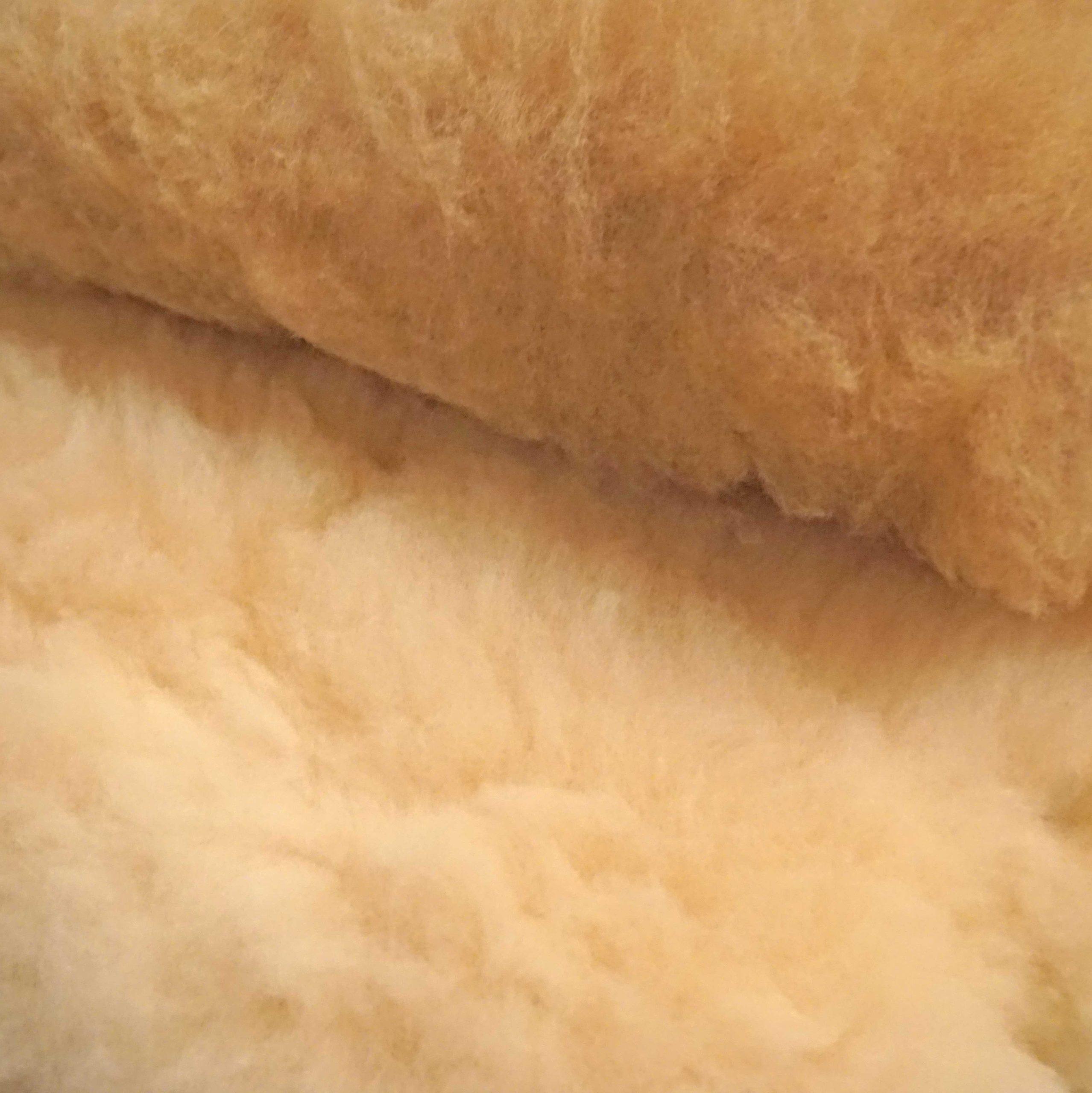 Wolle vom Coburger Fuchs